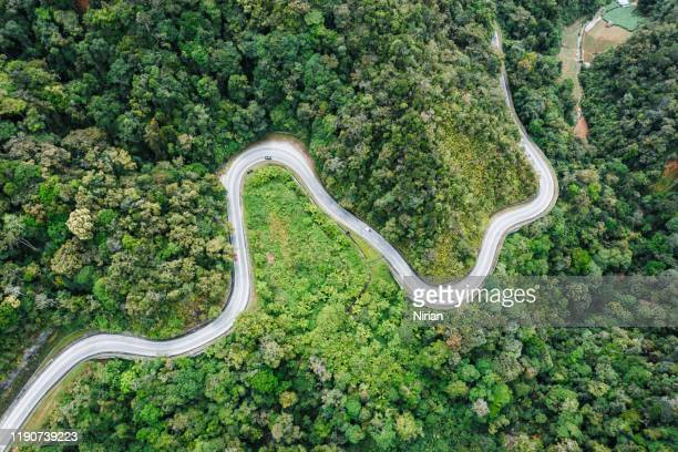 aerial landscape of winding road in the rainforest - climate stock pictures, royalty-free photos & images