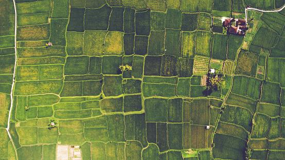 Aerial landscapes 695486050