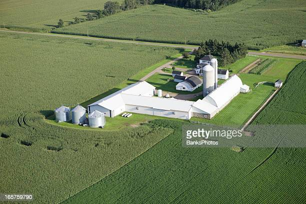 aerial mid-summer farm surrounded by cornfields - farmhouse stock pictures, royalty-free photos & images