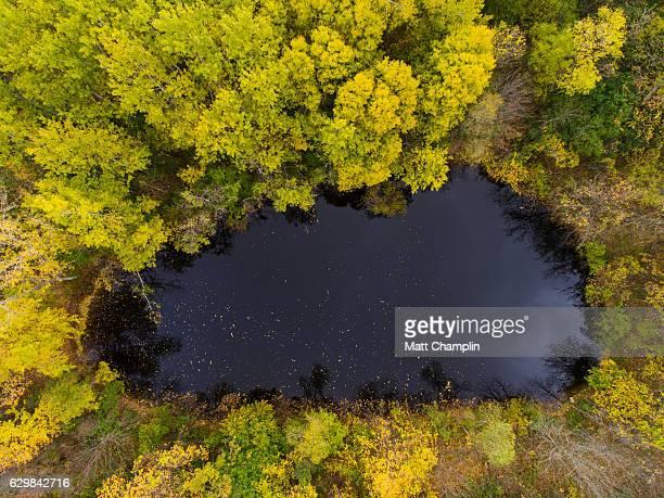 aerial of autumn pond - スカネアトレス湖 ストックフォトと画像