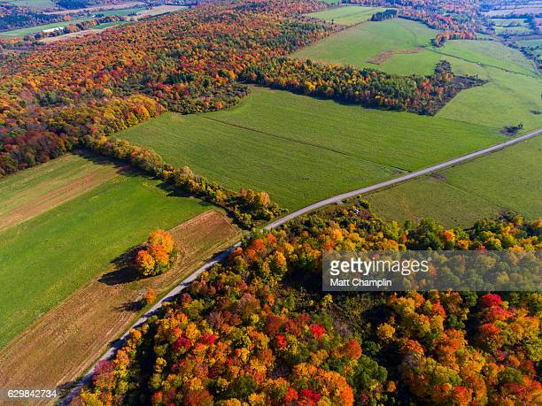 aerial of autumn woodland scene and rural road - finger lakes stock pictures, royalty-free photos & images