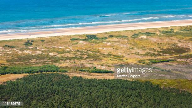 aerial of beach and dunes at schoorlse duinen national park - national recreation area stock pictures, royalty-free photos & images