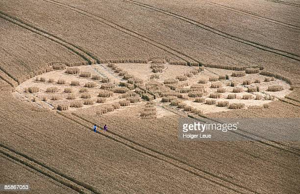 aerial of crop circle. - crop circle stock pictures, royalty-free photos & images