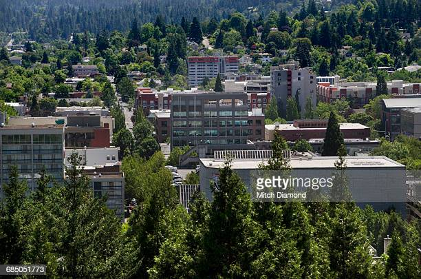 aerial of eugene oregon - eugene oregon stock pictures, royalty-free photos & images