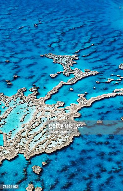 aerial of hardy reef, near whitsunday islands, great barrier reef, queensland, australia, australasia - great barrier reef aerial stock pictures, royalty-free photos & images