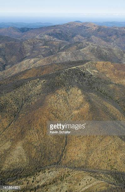 aerial of kalmiopsis wilderness, siskiyou national forest, southern oregon. austere serpentine landscape looking west - siskiyou stock pictures, royalty-free photos & images