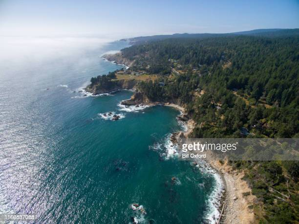 aerial of northern california coast with forest and ocean - san francisco bay area stock pictures, royalty-free photos & images