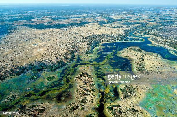 aerial of okavango delta. - okavango delta stock photos and pictures