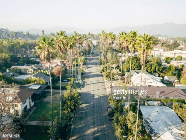 Aerial of Palm Tree Lined Street