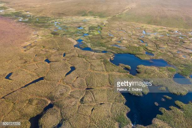 aerial of polygons on the tundra - permafrost stock pictures, royalty-free photos & images