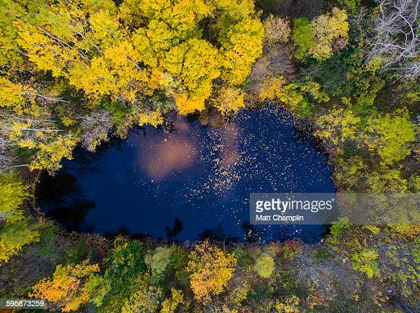 aerial of pond surrounded by autumn trees - skaneateles lake stock pictures, royalty-free photos & images