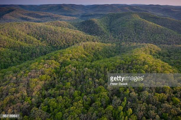 aerial of richland creek wilderness, ozark highlands trail, arkansas - ozark mountains stock pictures, royalty-free photos & images
