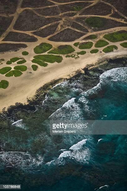aerial of spotted bush formations and shoreline at sandy beach. - merten snijders stockfoto's en -beelden