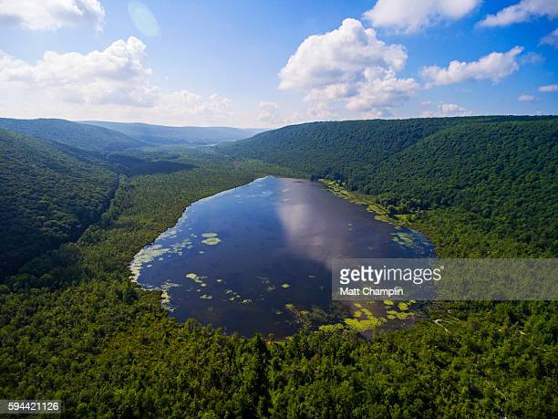 aerial of the labrador pond - finger lakes stock pictures, royalty-free photos & images