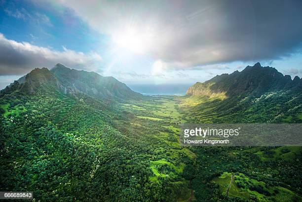 aerial of tropical rainforest, hawaii - lush stock pictures, royalty-free photos & images