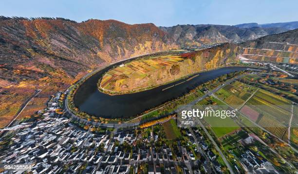 aerial of vineyards in mosel loop near bremm at autumn, rhineland-palatinate, germany - moselle france stock pictures, royalty-free photos & images