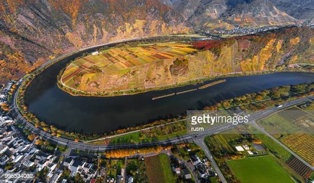 aerial of vineyards in mosel loop near bremm at autumn, rhineland-palatinate, germany - moselle stock pictures, royalty-free photos & images
