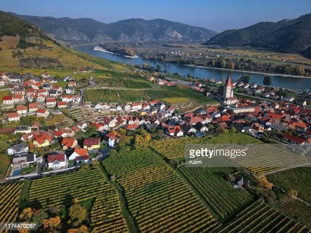 luftbild von weisenkirchen in der wachau stadt und weinberge im herbst. wachautal, österreich - stadtviertel stock-fotos und bilder