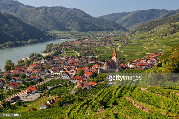 aerial panorama of weisenkirchen in der wachau town and vineyards at autumn. wachau valley, austria - valley stock pictures, royalty-free photos & images