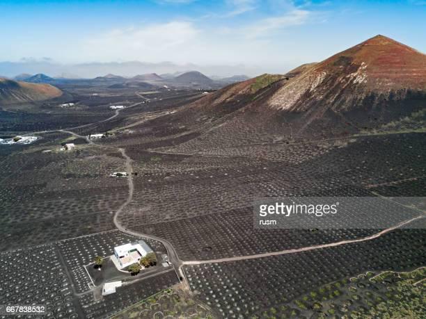 Aerial panorama of Wine valley of La Geria, Lanzarote, Canary islands, Spain