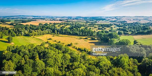Vue panoramique de champs verts de golden cultures paisible sur le patchwork de terres agricoles