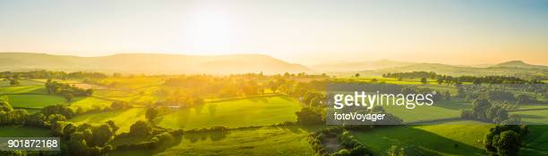 Aerial panorama over idyllic rural landscape golden sunset green pasture