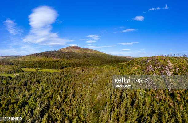 aerial panoramic view of forest and hills rural dumfries and galloway in south west scotland - johnfscott stock pictures, royalty-free photos & images