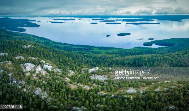 aerial panoramic view of the hills of koli national park in finland next to lake pielinen on an overcast summer day - nationalpark stock-fotos und bilder