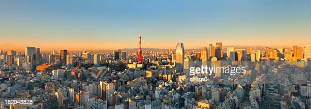 Aerial Panoramic View of Tokyo at Sunrise (XXXL)