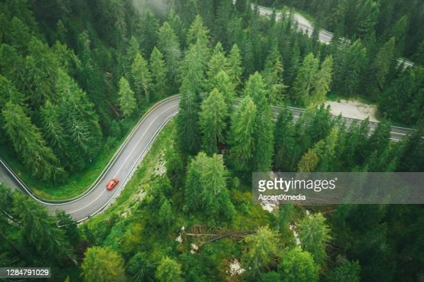 luftperspektive des autos, das eine nasse straße durch den wald fährt - kieferngewächse stock-fotos und bilder