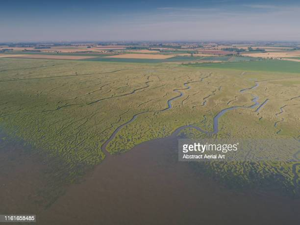 aerial perspective of marshlands, lincolnshire, united kingdom - lincolnshire stock pictures, royalty-free photos & images