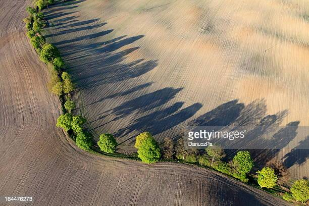 aerial photo of a field in spring - pomorskie province stock photos and pictures