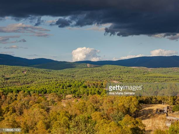 aerial photo of an scenic landscape with mountains and forest in autumn in a cloudy day - extremadura stock pictures, royalty-free photos & images