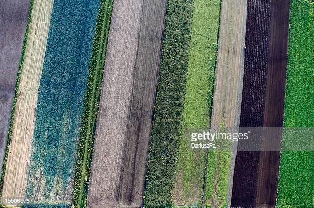 Aerial Foto von Ackerland