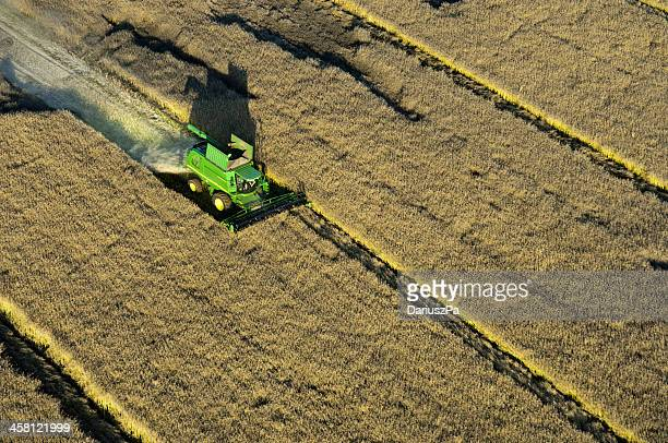 aerial photo of rapeseed - john deere stock pictures, royalty-free photos & images