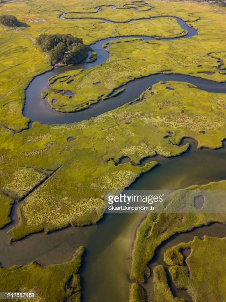 aerial photograph of wetland estuary - estuary stock pictures, royalty-free photos & images