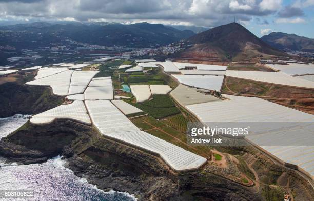 Aerial photography view east of Greenhouses in Barrio Los Dos Roques, Gran Canaria. Canary Islands, Spain