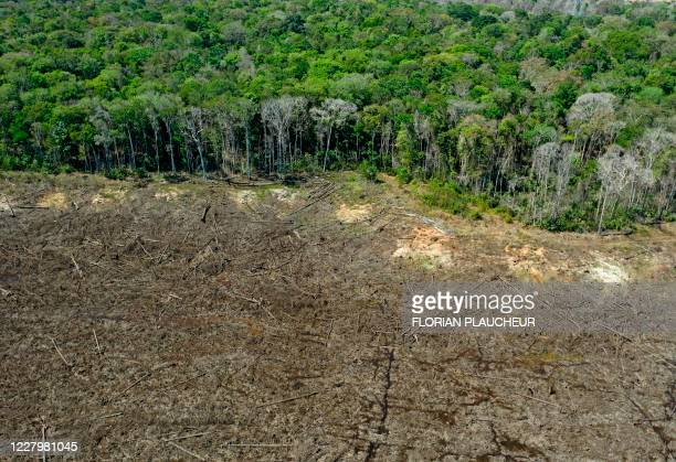 Aerial picture of a deforested area close to Sinop, Mato Grosso State, Brazil, taken on August 7, 2020.