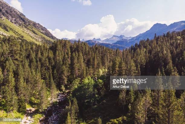 aerial picture of pyrenees mountains in summer. - cataluña fotografías e imágenes de stock