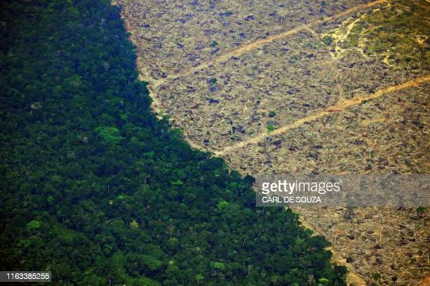 Aerial picture showing a deforested piece of land in the Amazon rainforest near an area affected by fires, about 65 km from Porto Velho, in the state...