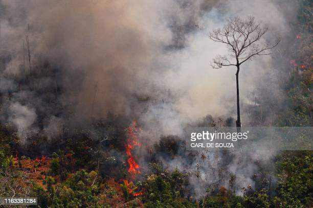TOPSHOT Aerial picture showing a fire raging in the Amazon rainforest about 65 km from Porto Velho in the state of Rondonia in northern Brazil on...