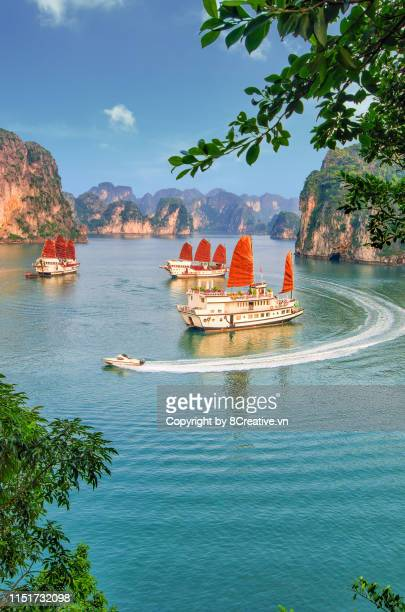 aerial picturesque scenery with luxury cruises (sail boat) in ha long bay, quang ninh, vietnam (halong) - halong bay stock pictures, royalty-free photos & images