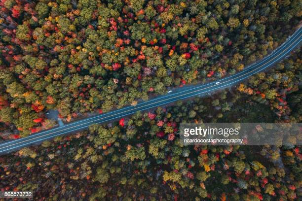 aerial road trip in minnewaska state park preserve - northern ireland stock photos and pictures