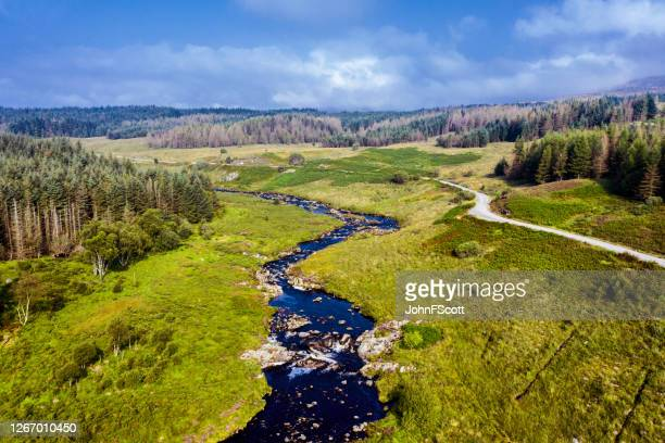 aerial scenic view of a scottish river and dirt road in an area of forest in east ayrshire, west scotland - scotland stock pictures, royalty-free photos & images
