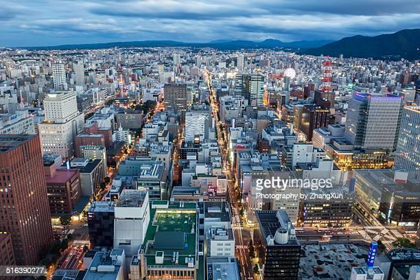 Aerial shoot of Sapporo Hokkaido after dark
