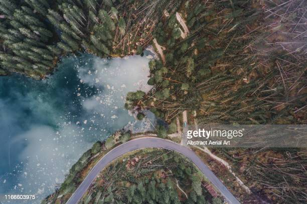 aerial shot at the edge of lake carezza showing storm damaged forest, dolomites, italy - natural disaster stock pictures, royalty-free photos & images