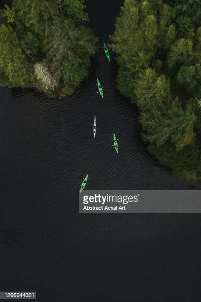 aerial shot directly above kayakers on a scottish loch, scottish highlands, united kingdom - drone point of view stock pictures, royalty-free photos & images