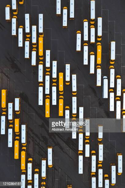 aerial shot directly above school buses, north carolina, united states of america - isolated color stock pictures, royalty-free photos & images