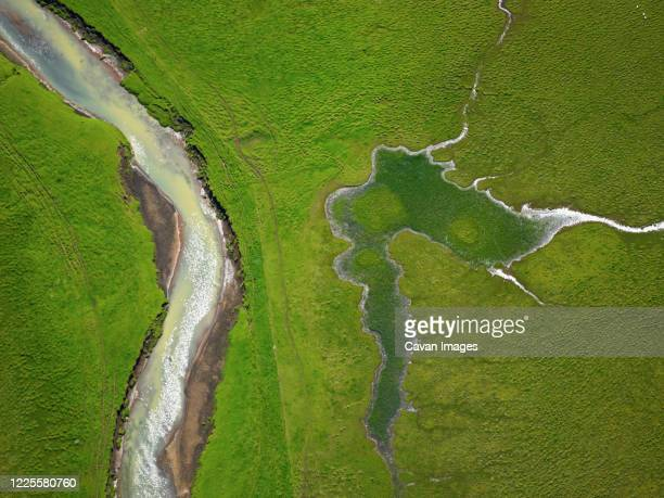 aerial shot from river running through green field - swamp stock pictures, royalty-free photos & images
