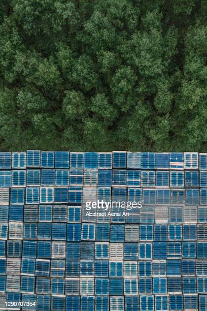 aerial shot looking down on pallets stacked up at the edge of a forest, essex, england, united kingdom - pallet industrial equipment stock pictures, royalty-free photos & images